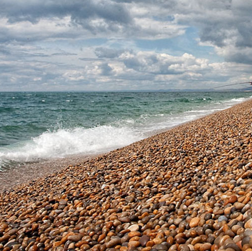Year 10 Geography Trip to Chesil Beach