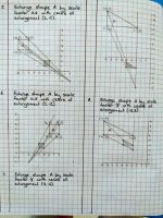 Finn Wilde-Y9-Maths 1
