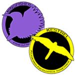 Kestrel-Kingfisher Badge